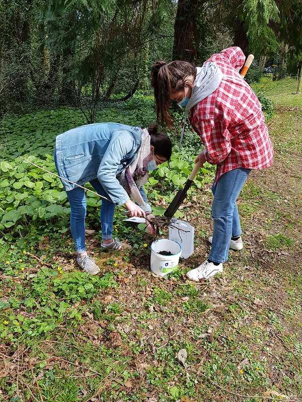 Défi collectif : Action planter des arbres dans le parc 20210325121437