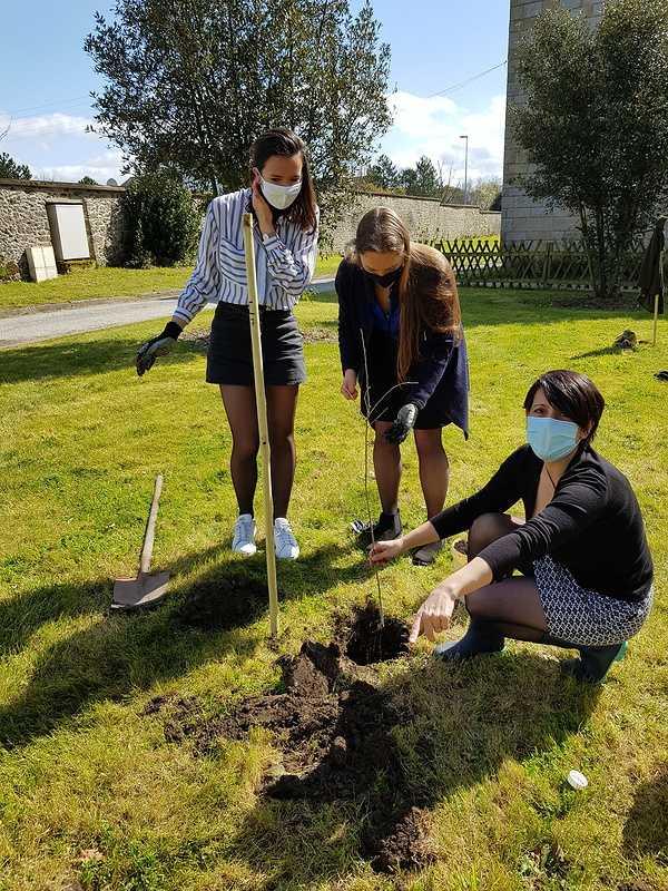 Défi collectif : Action planter des arbres dans le parc 20210325131958