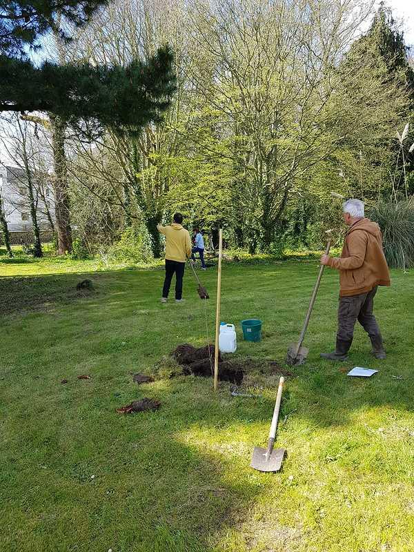 Défi collectif : Action planter des arbres dans le parc 20210325133216